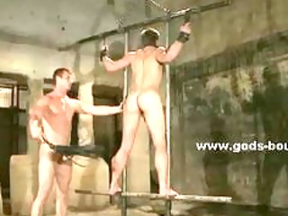 meaty homosexual hunk bound in ropes