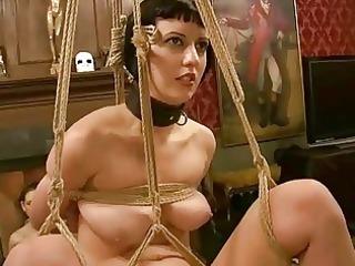 breasty hawt hot playgirl