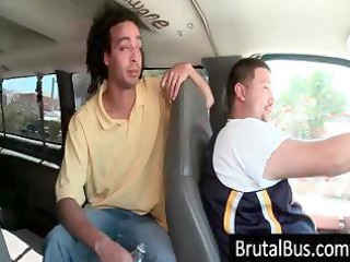 the brutal bus is on the road looking for