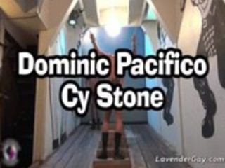dominic pacifico and cy stone hardcore homosexual