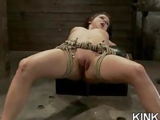 charming hawt playgirl bound, oiled