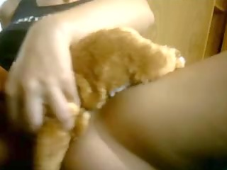 aint that is one favourable teddy bear?