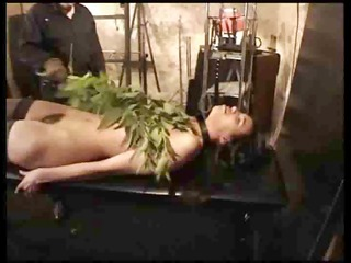 bushy gal punished with nettles