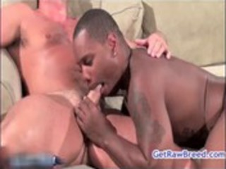 tyler reed and kane rider anal screwed homosexual