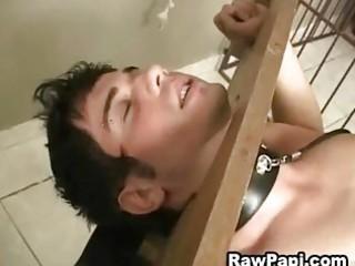 latin homosexual men indulging their bareback